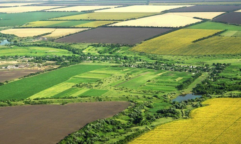 FURCULIȚĂ: Lidera PAS planifică să distrugă micii fermieri prin legiferarea vânzării pământului pentru străini